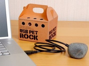USB Pet Rock and Its Story